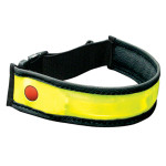 Planet Bike strap light